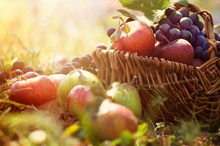 Какие фрукты и овощи есть осенью   Vegetarian.ru