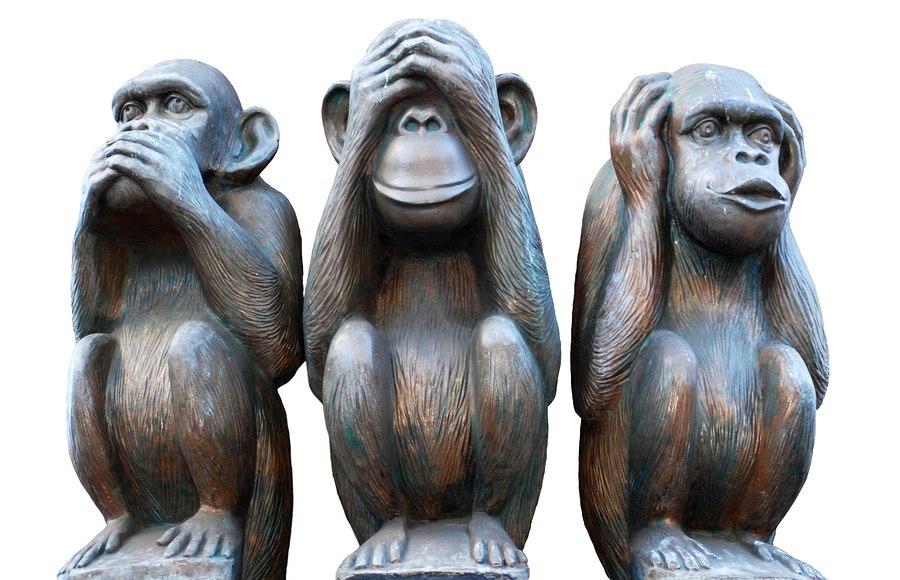 «Что-то сильно не так в нашем королевстве»   Центр защиты прав животных «ВИТА»