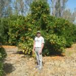 Могутов Ян Profile Picture