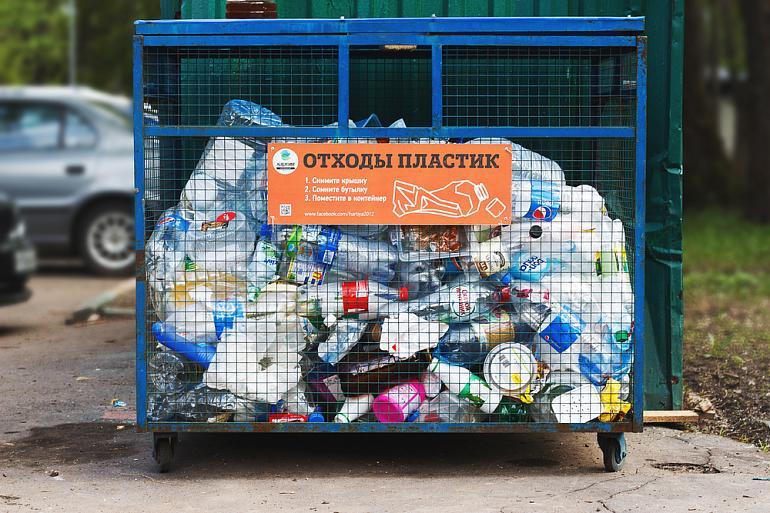 Я решил раздельно собирать мусор. С чего начать? | Vegetarian.ru