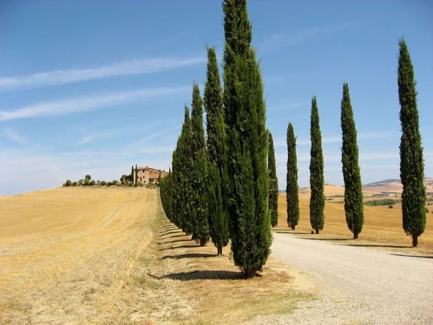 La temperatura media dell'Italia aumenterà di 3,2 °C entro il 2100 - Focus.it