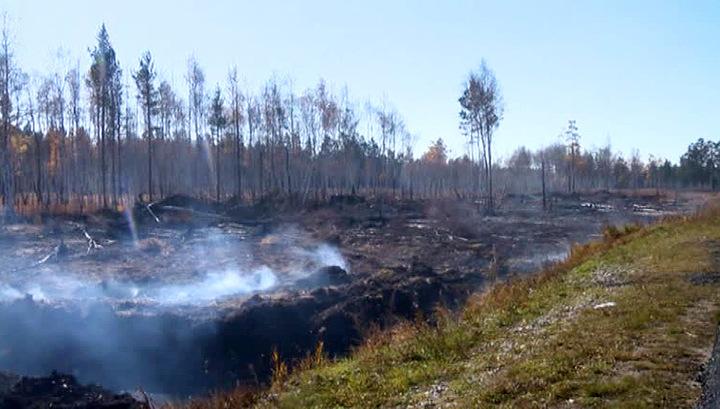 Вести.Ru: ОНФ бьет тревогу: экология Сибири находится под угрозой