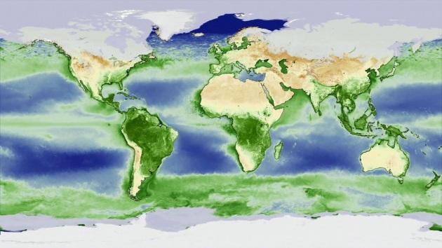 Il ciclo del verde sulla Terra - Focus.it