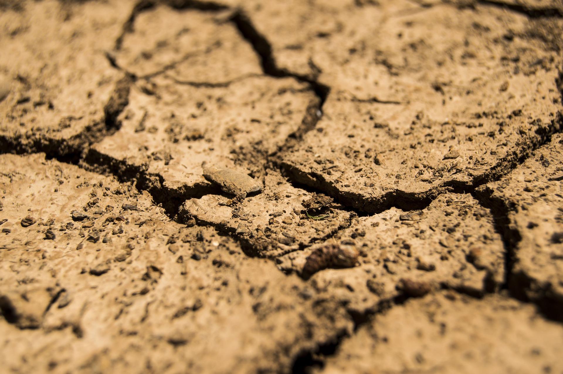 Un été à court d'eau : cessons les dérogations ! | France Nature Environnement