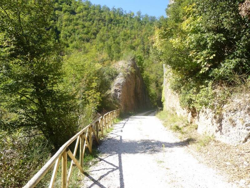 Mobilità dolce: ecco le greenways italiane e europee ⋆ La Nuova Ecologia