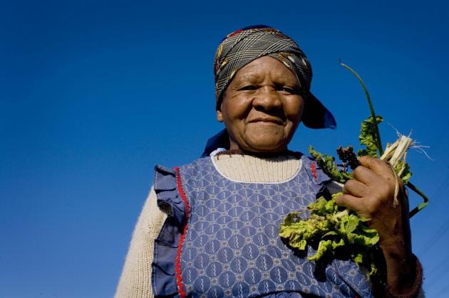 World Food Day 2016: il cibo e il clima che cambia - Focus.it