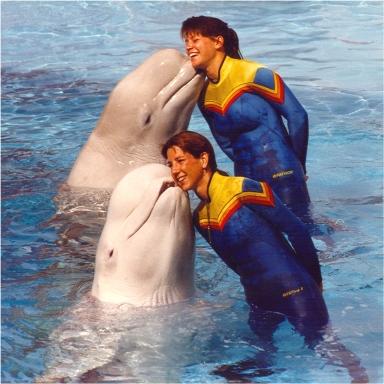 Всемирный день китов и дельфинов — Википедия