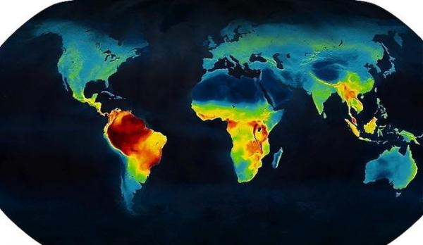 Mapa de la biodiversidad mundial para conservar especies en peligro de extinción