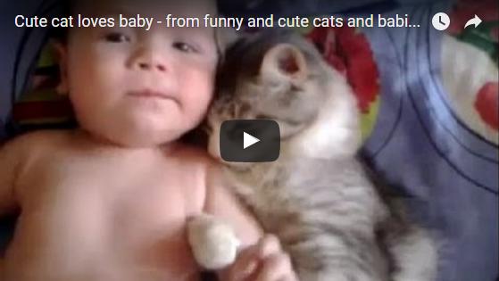 Katze liebt Baby | EIN HERZ FÜR TIERE Magazin