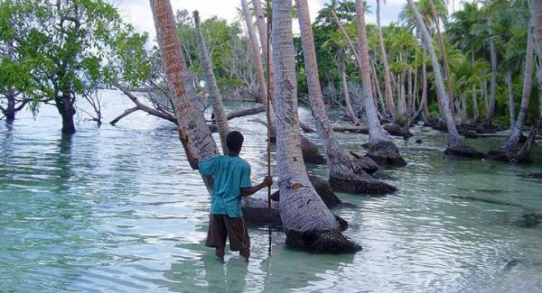 El cambio climático afecta distinto a cada ecosistema - EcologíaVerde