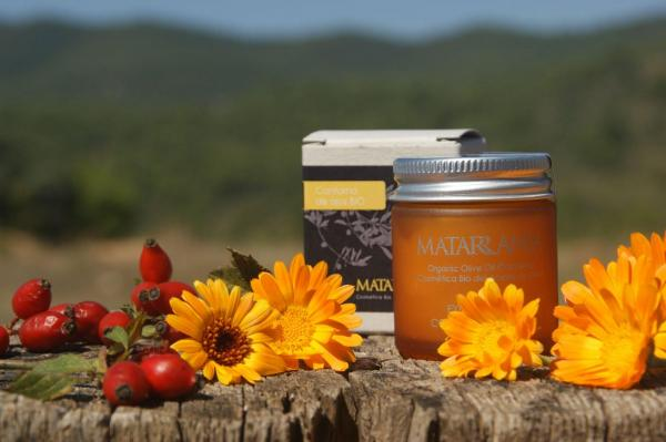 Tiendas de cosmética natural en España - EcologíaVerde