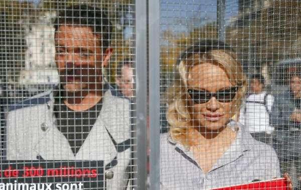 Памела Андерсон и Яник Жадо заперли себя в клетке, чтобы осудить страдание животных