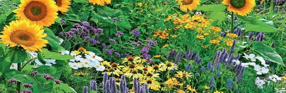 Садоводство Cover Image