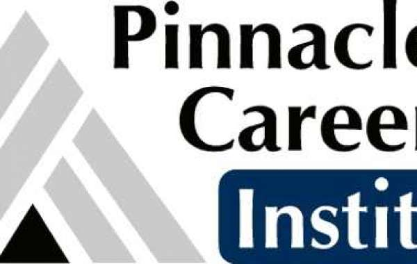 Pinnacle ways to get a records science certification