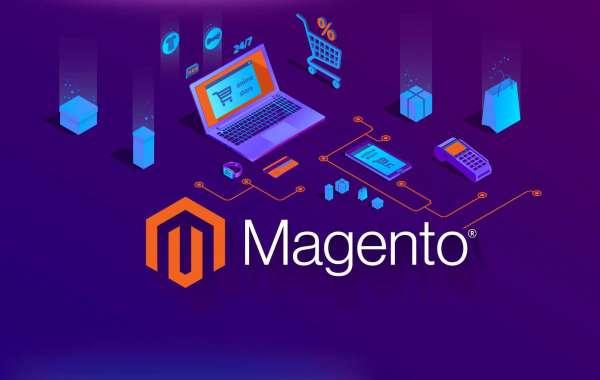 it's better – magento network or magento organisation model?