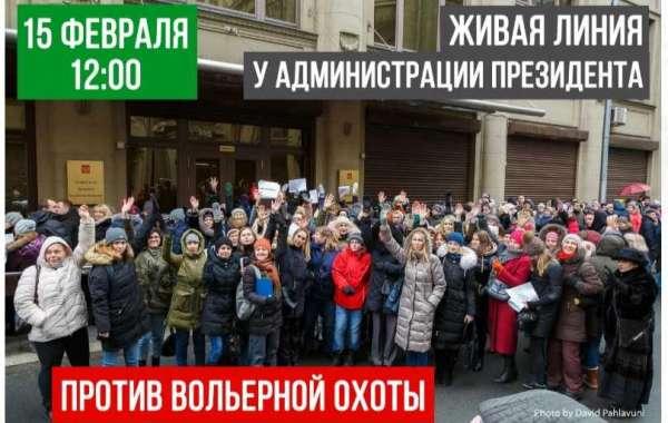 Единая Россия плюнула в душу всем зоозащитникам России