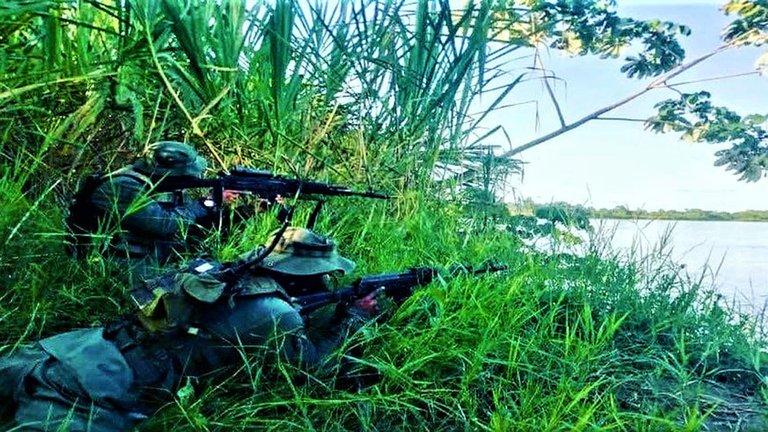 La Guerrilla, El Ejército y La FAES: un drama de los civiles en Apure   Noticias Internacionales